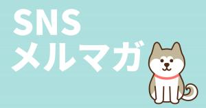 HachiのSNS・メルマガについて